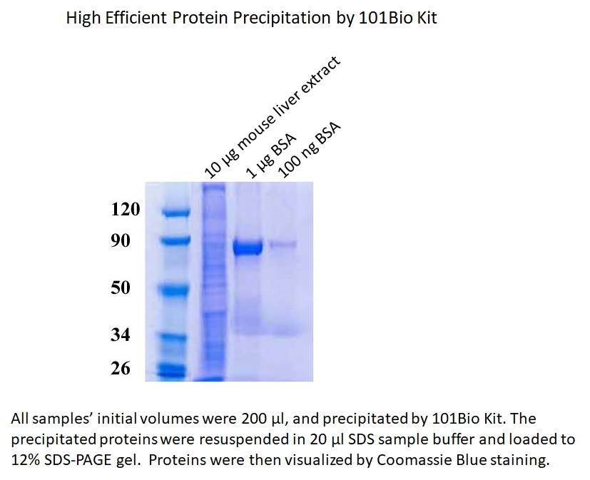 High Efficiency Protein Precipitation kit