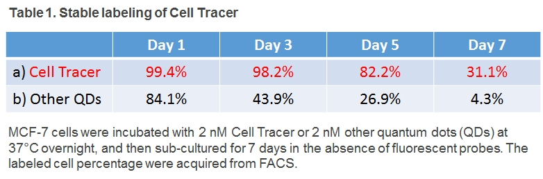 Long-term Cell Tracer, stable labeling