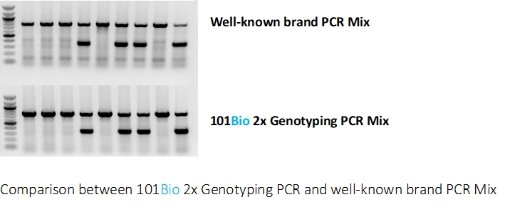 2x Genotyping PCR Ready Master Mix /