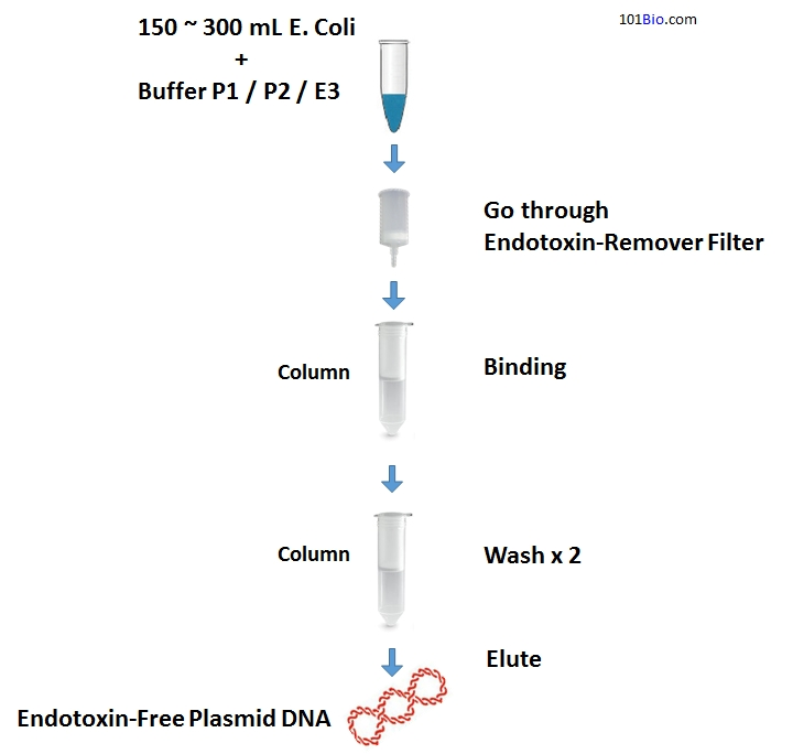 Endotoxin-Free Plasmid DNA Maxiprep Kit, EndoFree Plasmid DNA purification Kit