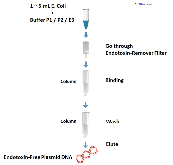 Endotoxin-Free Plasmid DNA Miniprep Kit, EndoFree Plasmid DNA purification Kit