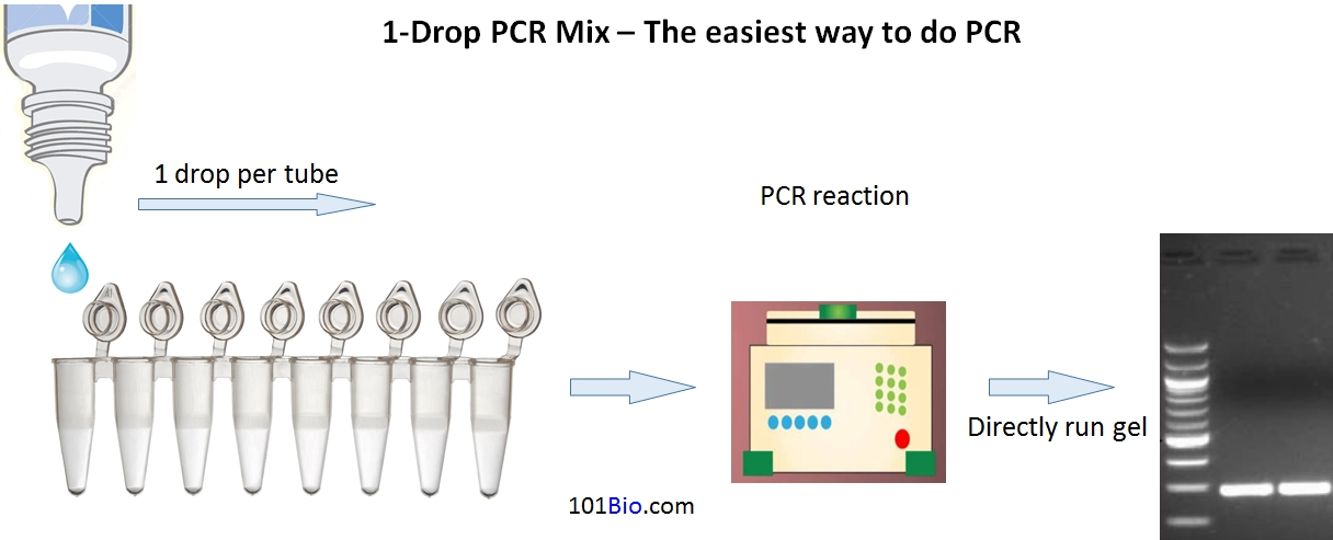 1-Drop PCR Master Mix, easiest way to run PCR